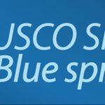 blue_spring_logo